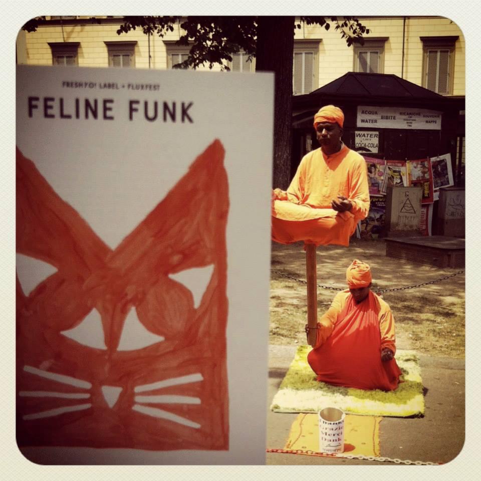 Felinefunk4